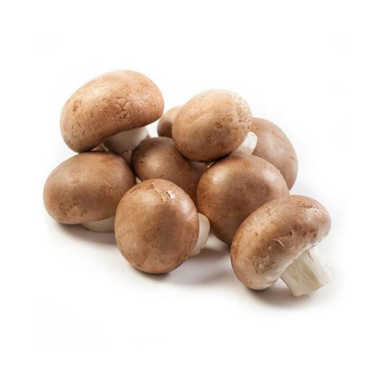 Mushrooms Chestnut