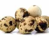 Quails Eggs