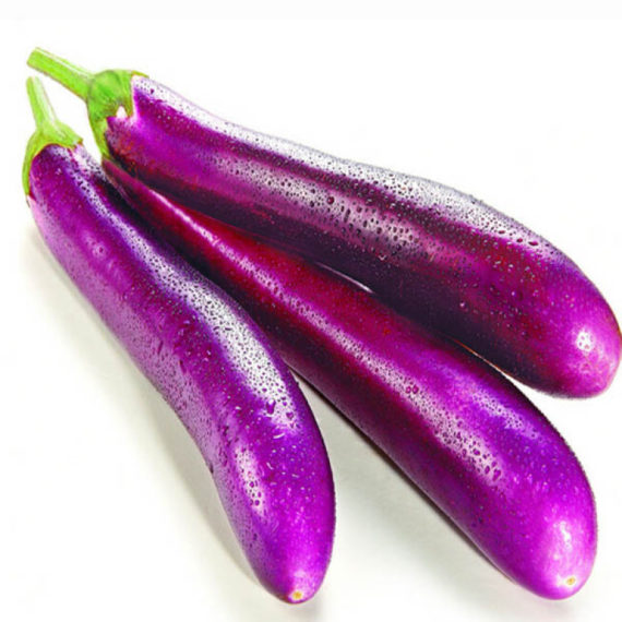 Japanese aubergine