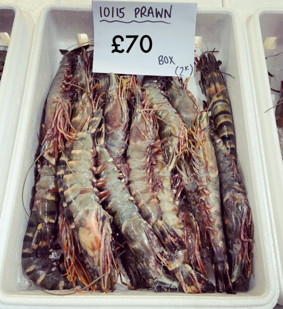 10/15 large wild prawns