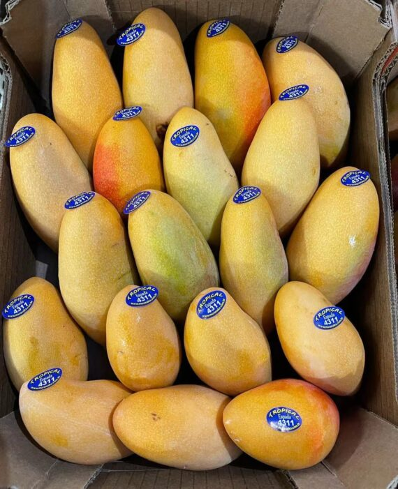 fresh sweet mango